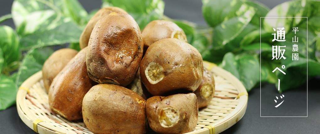 産地直送!種子島産安納芋の通販【平山農園】