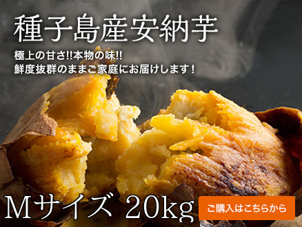 annoubeni-M-20kg