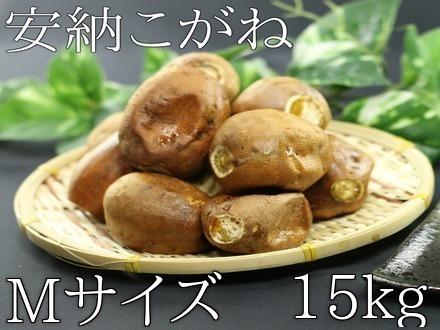 kogane_m_15kg